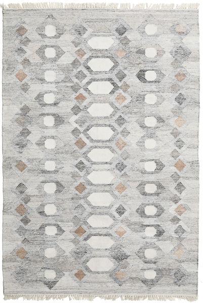 Tapis D'extérieur Martha Tapis 160X230 Moderne Tissé À La Main Gris Clair ( Inde)