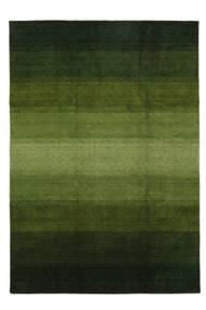 Gabbeh Rainbow - Vert Tapis 240X340 Moderne Vert Foncé/Vert Olive (Laine, Inde)