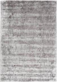 Crystal - Gris Tendre Tapis 160X230 Moderne Gris Clair/Gris Foncé ( Inde)