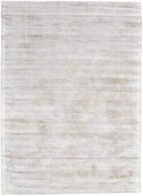 Tribeca - Warm Beige Tapis 300X400 Moderne Gris Clair Grand ( Inde)