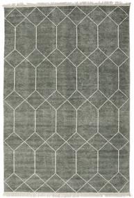 Kiara - Vert Forêt Tapis 160X230 Moderne Fait Main Gris Clair/Gris Foncé ( Inde)