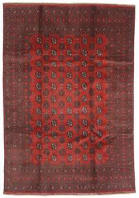 Afghan Tapis 200X288 D'orient Fait Main Rouge Foncé/Marron Foncé (Laine, Afghanistan)