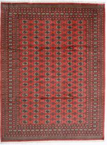 Pakistan Boukhara 2Ply Tapis 246X325 D'orient Fait Main Rouge Foncé/Rouille/Rouge (Laine, Pakistan)