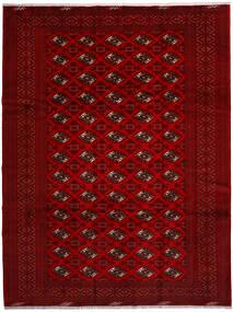 Turkaman Tapis 258X344 D'orient Fait Main Rouge/Rouge Foncé/Marron Foncé Grand (Laine, Perse/Iran)