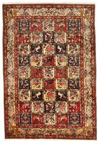 Bakhtiar Collectible Tapis 212X311 D'orient Fait Main Rouge Foncé/Marron Foncé (Laine, Perse/Iran)
